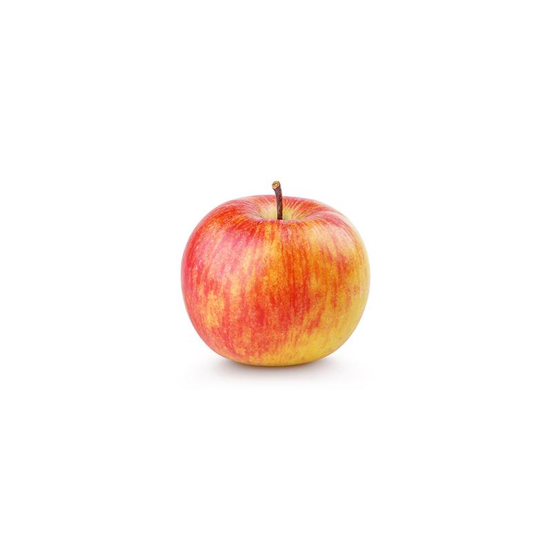 Apfel Delbarestival (Deutschland)