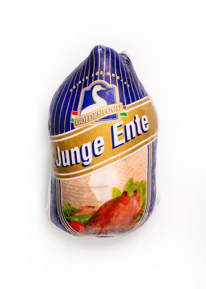 Ungarische junge Ente TK